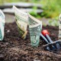 Campanii Google AdWords cu plata prin PayPal